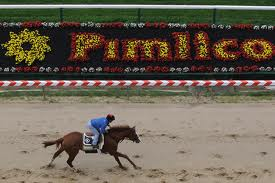 Prominence at Pimlico